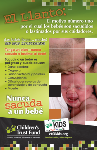 Never shake poster 15 spanish